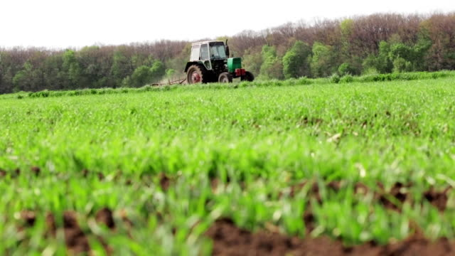 Tractor Sowing And Cultivating Field video