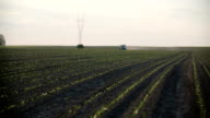 Tractor spray fertilize on field with chemicals in agriculture field. video