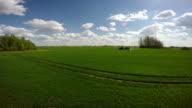 Tractor spraying green wheat field video