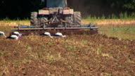 Tractor working on plowed field video