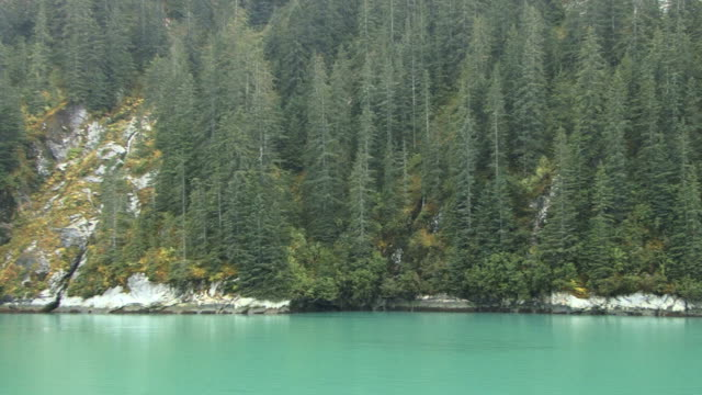 Tracy Arm Fjords in Alaska video