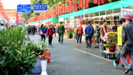Traditional chinese spring festival flower market video