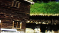 1961: Traditional Danish viking nordic style green living sod roof house. video