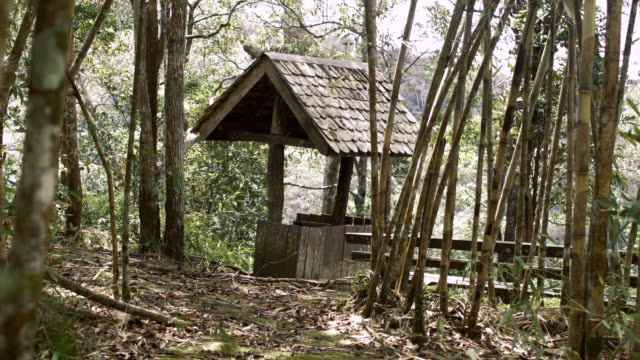 Traditional House In Bamboo Forest video