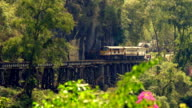 Train crossing Krasae Viaduct in Kanchanaburi, Thailand video