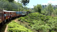 Train in Sri Lanka with Tea Plantations video