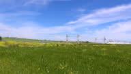 train over green field video