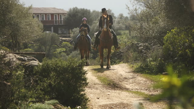 Trainer and young woman on horses at riding school video