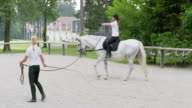 PAN Training a white horse in the longe video
