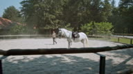 DS Training a white saddled horse in round pen video