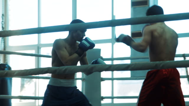 Training sparring of two boxers on a ring video