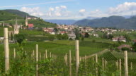 Tramin in South Tyrol and its Vineyards PAN video