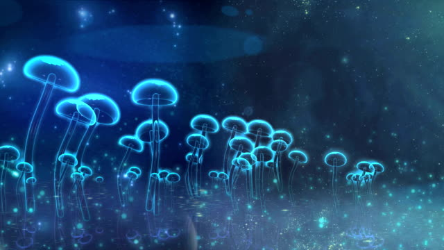 transparent vitreous mushroom waggle in the wind video