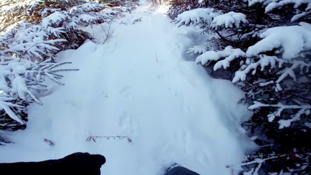 Trapper or Hunter POV Following Animal Footprint video