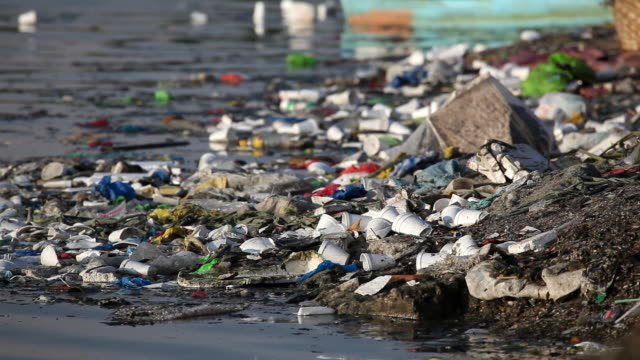HD trash along polluted river bank video