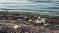 Trash on shore with dirty water video
