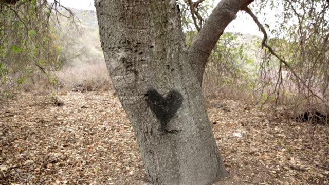 Tree Heart video