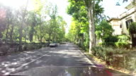 Tree-lined avenue in Florence video