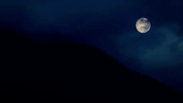 Trees On Mountainside With Full Moon video