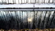 trees reflected in a snowy winter river video
