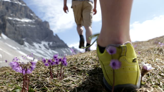 Trekking Dolomiti video