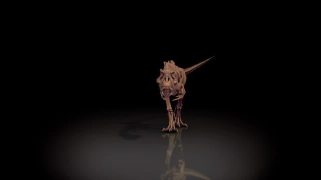 Trex skeleton walking, roaring 3D animation, alpha channel video