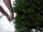 Trim The Christmas Tree video