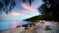 Tropical Beach at Dusk video