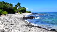 Tropical beach in Kona Hawaii video