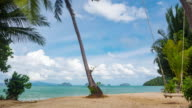 Tropical beach in sunny day video