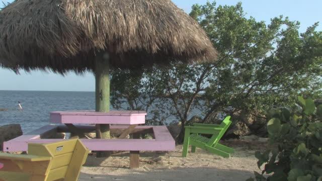 Tropical beach loop - HD 30F video