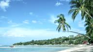 Tropical beach, palms, sea, waves video