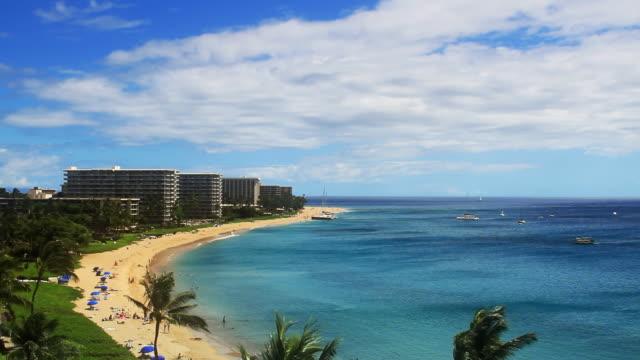 Tropical Beach Resort Paradise (HD) video