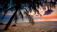 Tropical Beach Sunset video