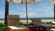 Tropical Beach video