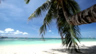Tropical coastline with white sand, Philippines video