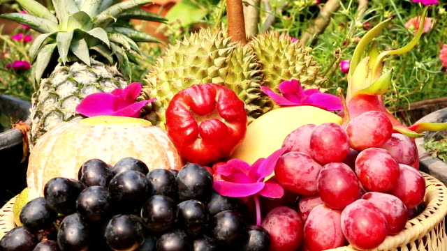 Tropical Fruits video
