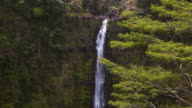 Tropical Hawaiian Water falls video