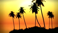 Tropical Island Palms and Fiery Ocean Waves Sunset video