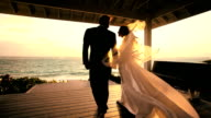 Tropical Island Wedding Couple video