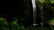 Tropical Lush Waterfall video