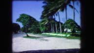 1964: Tropical palm beach beach parking area yellow taxi cab type car. video