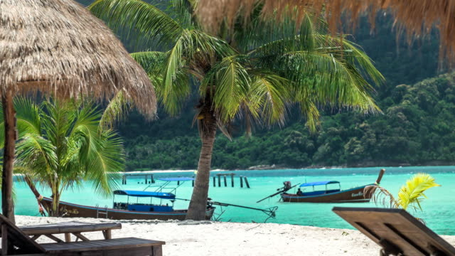 Tropical palm trees moving in a slight breeze on sandy beach, swinging long tail boats in blue ocean water in background video