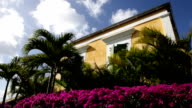 Tropical purple bougainvillea, green palm trees, yellow house, blue sky video