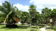 Tropical Resort Grounds video