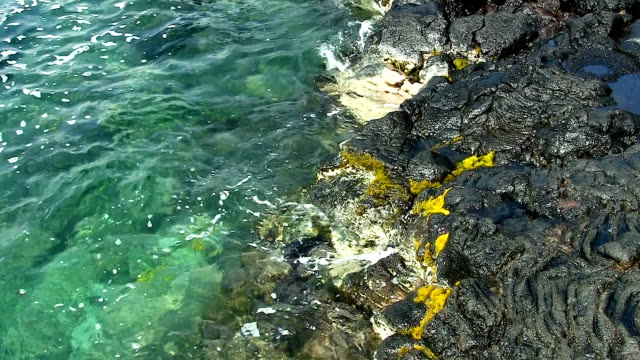 Tropical Sea Water Surging Up On Black Lava Rock Shore video