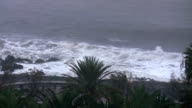 Tropical seashore in the storm video