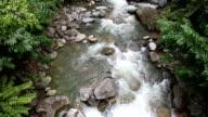 HD: Tropical Waterfall at Kota Kinabalu National Park Sabah Malaysia video