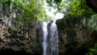 Tropical Waterfall in Lush Green Hawaiian Jungle. Adventure Leisure Vacation Slow Motion video