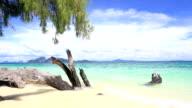 Tropical white sand Beach andaman sea at Trang Thailand dolly video